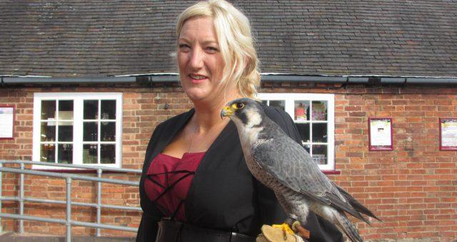 Hawkwise: Bird of Prey Experience