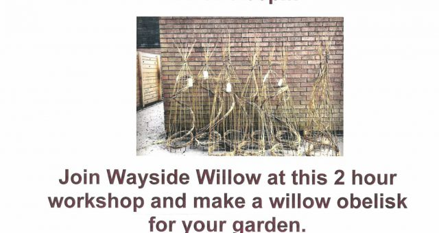 Willow Workshop – SOLD OUT